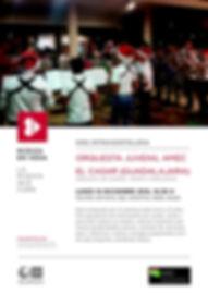 Orquesta AMEC_Cartel MeV(1).jpg