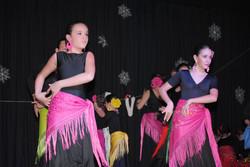 festival danza el casar14