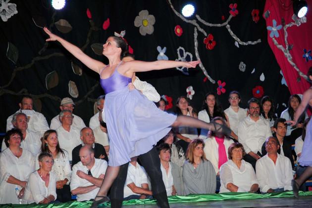espectaculo musica y danza el casar61.jpg