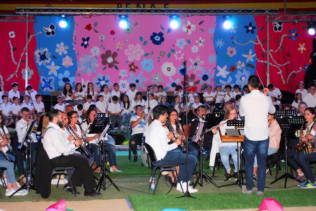 espectaculo musica y danza el casar45.jpg
