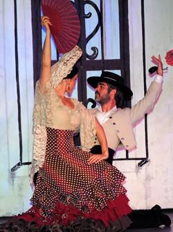 danza al viento amec51