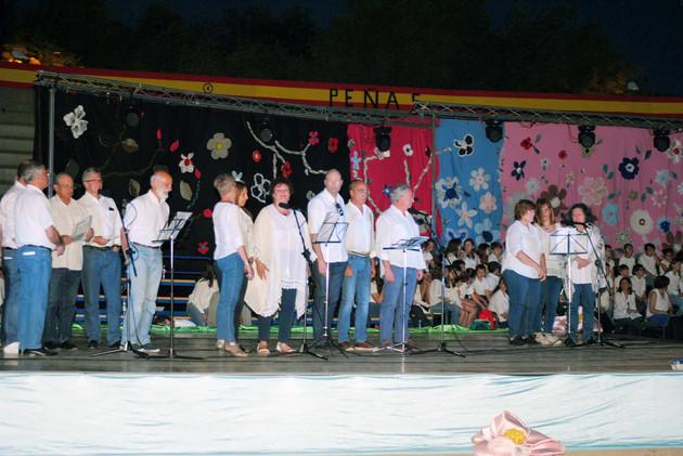 espectaculo musica y danza el casar3.jpg