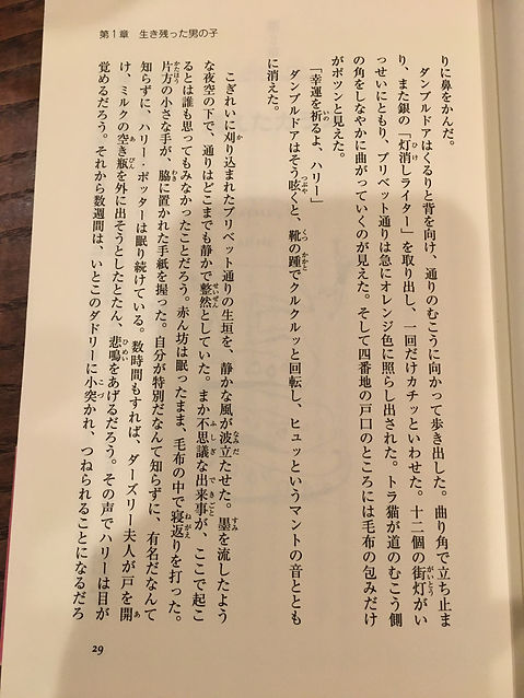 IMG_4087.JPG
