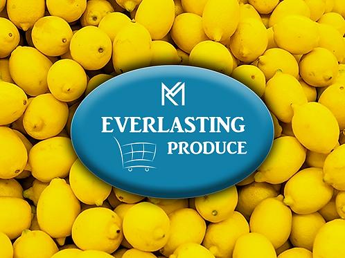 Everlasting Lemon