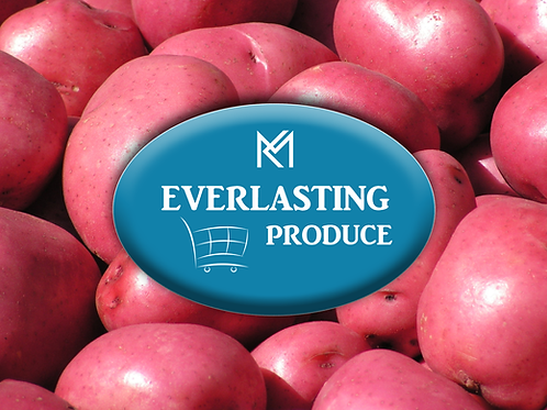 Everlasting Sm Red Potato