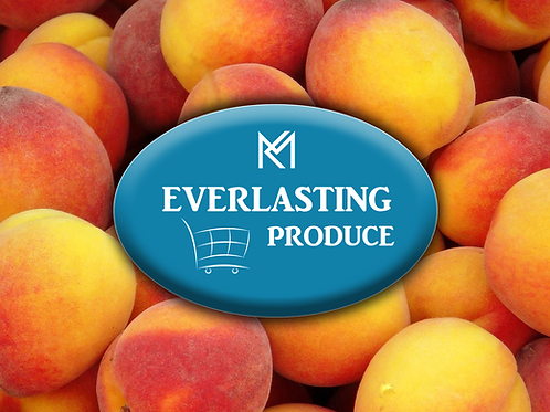 Everlasting Peach (LARGE)