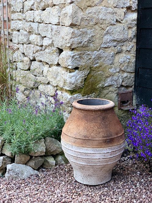 OP21 Terracotta Top Olive Pot 50cm