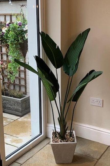 SK201 Artificial Palm Plant Display With Square Pot 140cm H x 80cm W x 80cm D