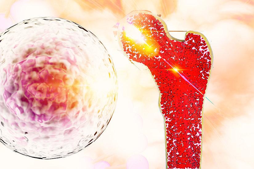 Bone Stem Cell.jpg