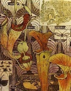 botanicus-w.jpg