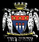 logo-irigny-transparent-279x300_3D.png