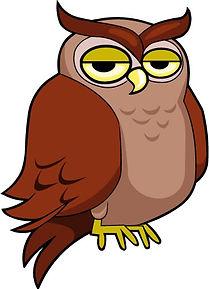 Sly owl.jpg