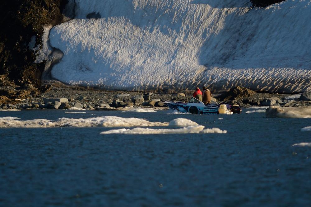 Беркут пробирается во льдах