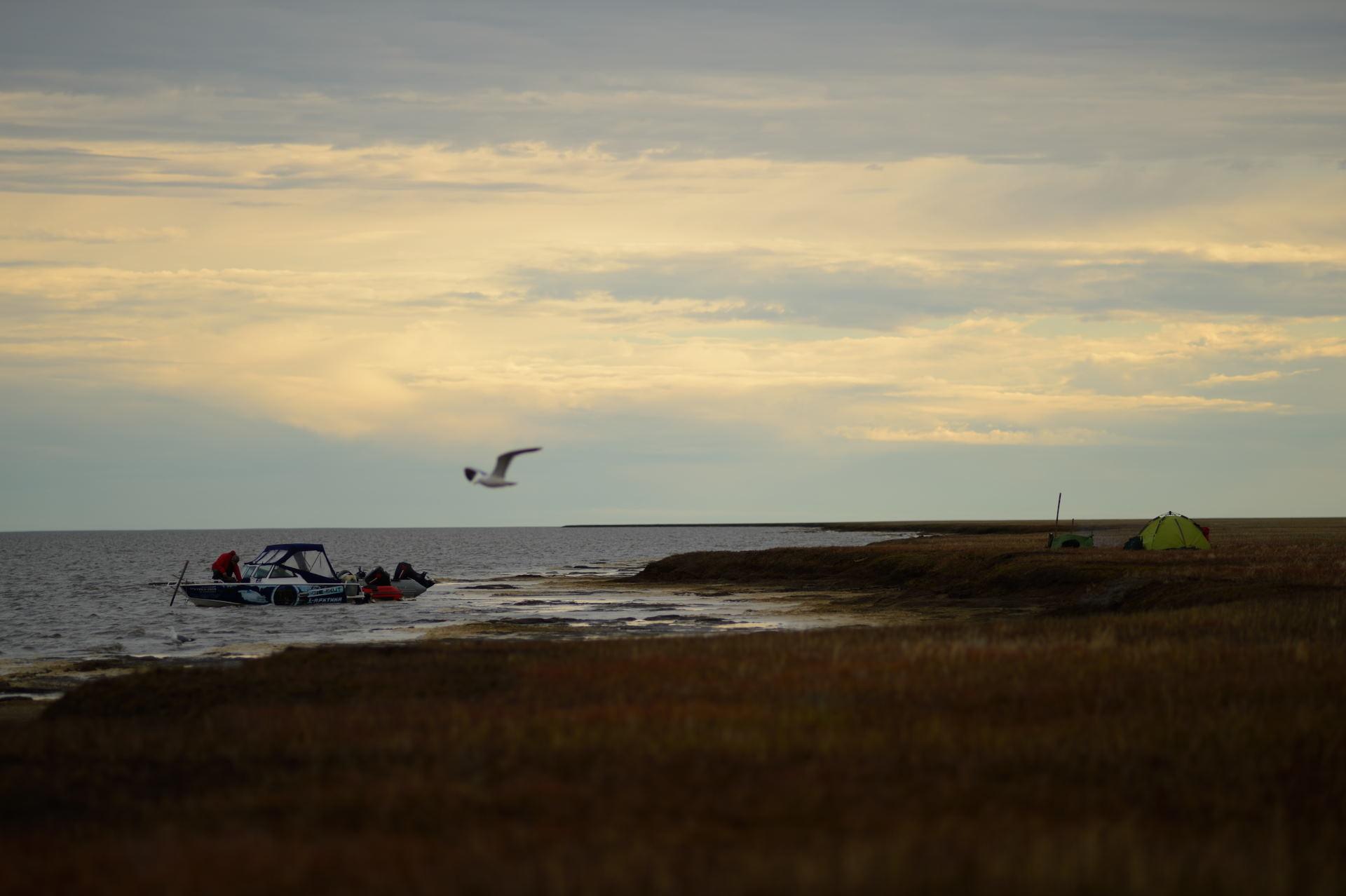 Лодки , морская стоянка...