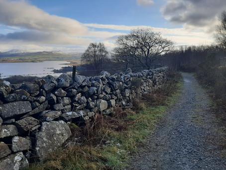 Ras Llyn Trawsfynydd Lake Race 2021