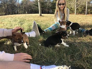 2019_puppies00014.jpg