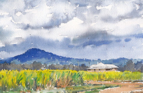 Canefields, Storm Approaching