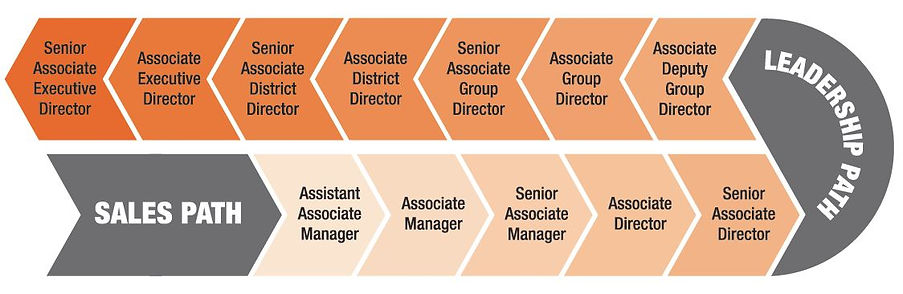 OrangeTee Career Path.jpg