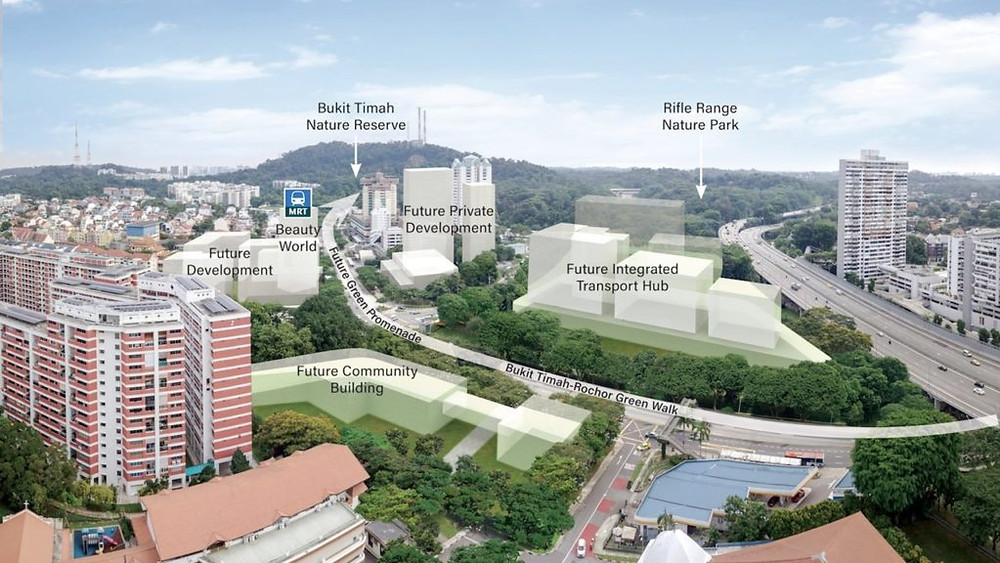 condos to invest in bukit timah beauty world area