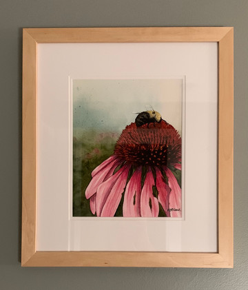 Coneflower Magnified_2