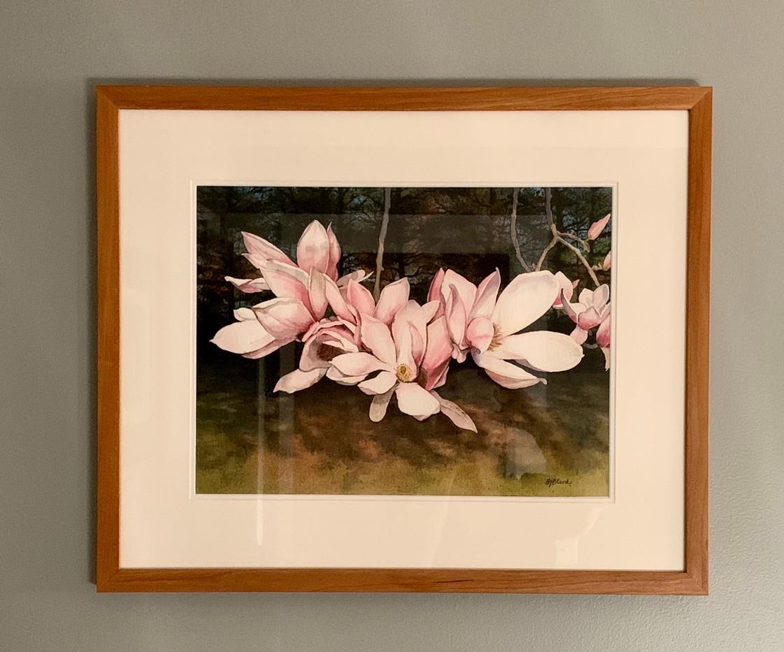 Magnolias in the Sun_2