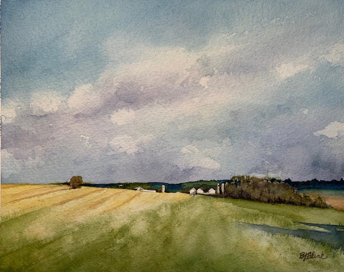 Spring Fields_1