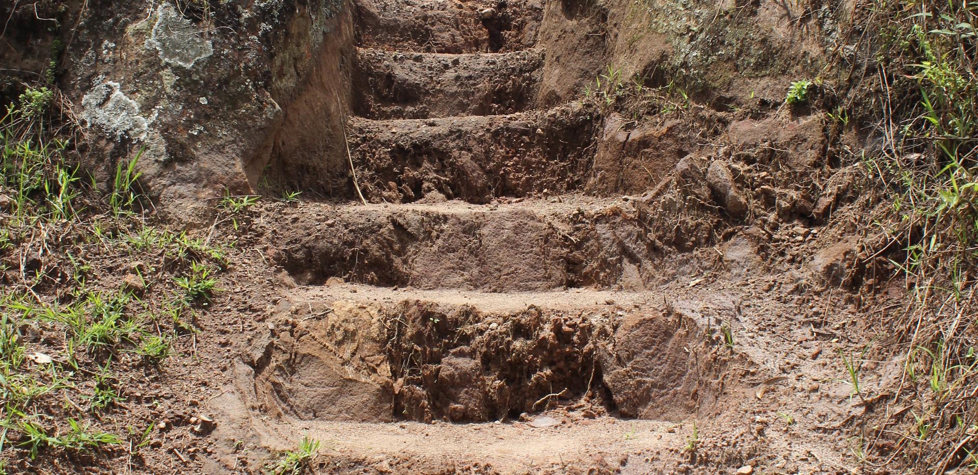 Grace - dirt stairway.jpg