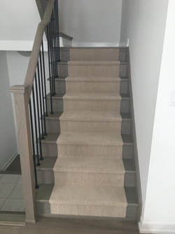 Stairs with Carpeting