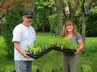 Annual Native Plant Sale