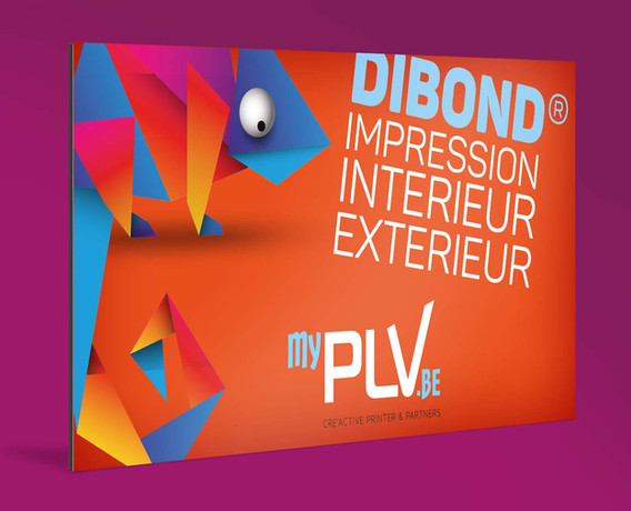 dibond_2_myPLV.jpg