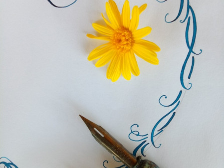 Calligraphy with Judith Ann