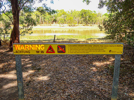 Be aware of crocodiles (often hidden) in the water