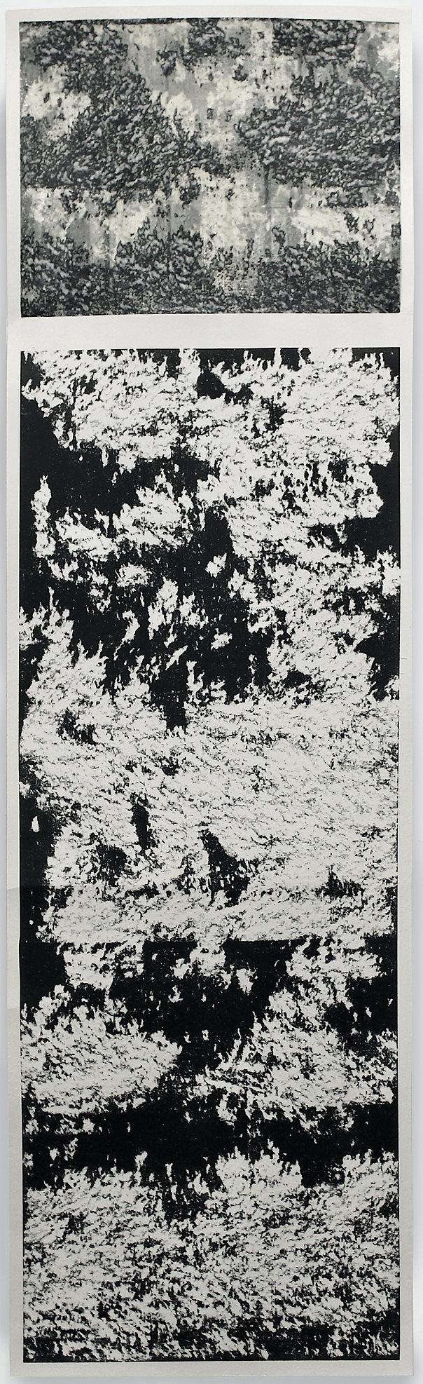 LABE GEMINUS, 2021. Tinta china y papel