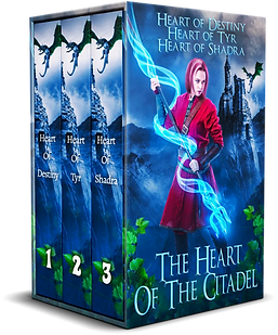 Heart Of The Citadel Boxset Cover #1-3.p