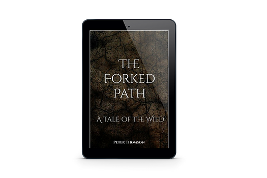 TITLE:  The Forked Path
