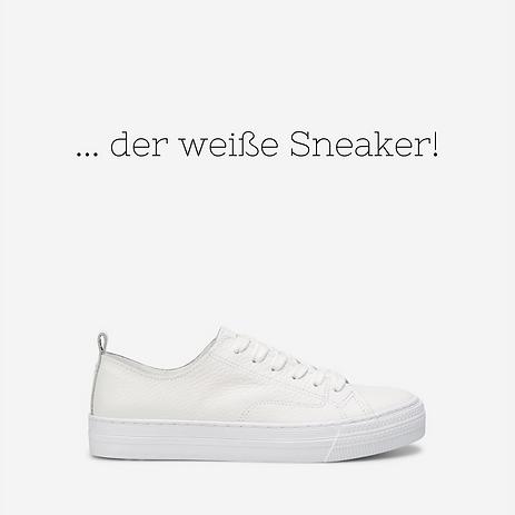 _der weiße Sneaker!.png