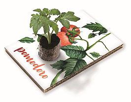 Cartolina Pomodoro