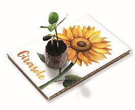 Cartolina Girasole