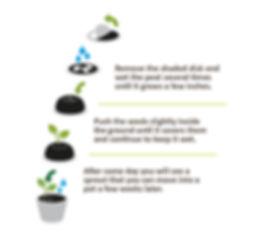Istruzioni cartoline ecologiche