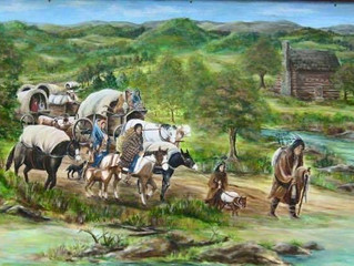 Do You Have a Cherokee in Your Family Tree?