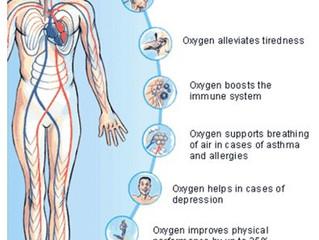 Oxygen And Longevity
