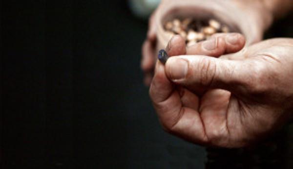 Seed-corn-Lisa Christiansen