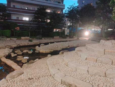 大横川親水公園じゃぶじゃぶ池の水質改善に向けてー川松都議と連携して解決へ