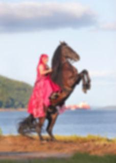 Cirque Ekasringa-Cheval canadien cabré