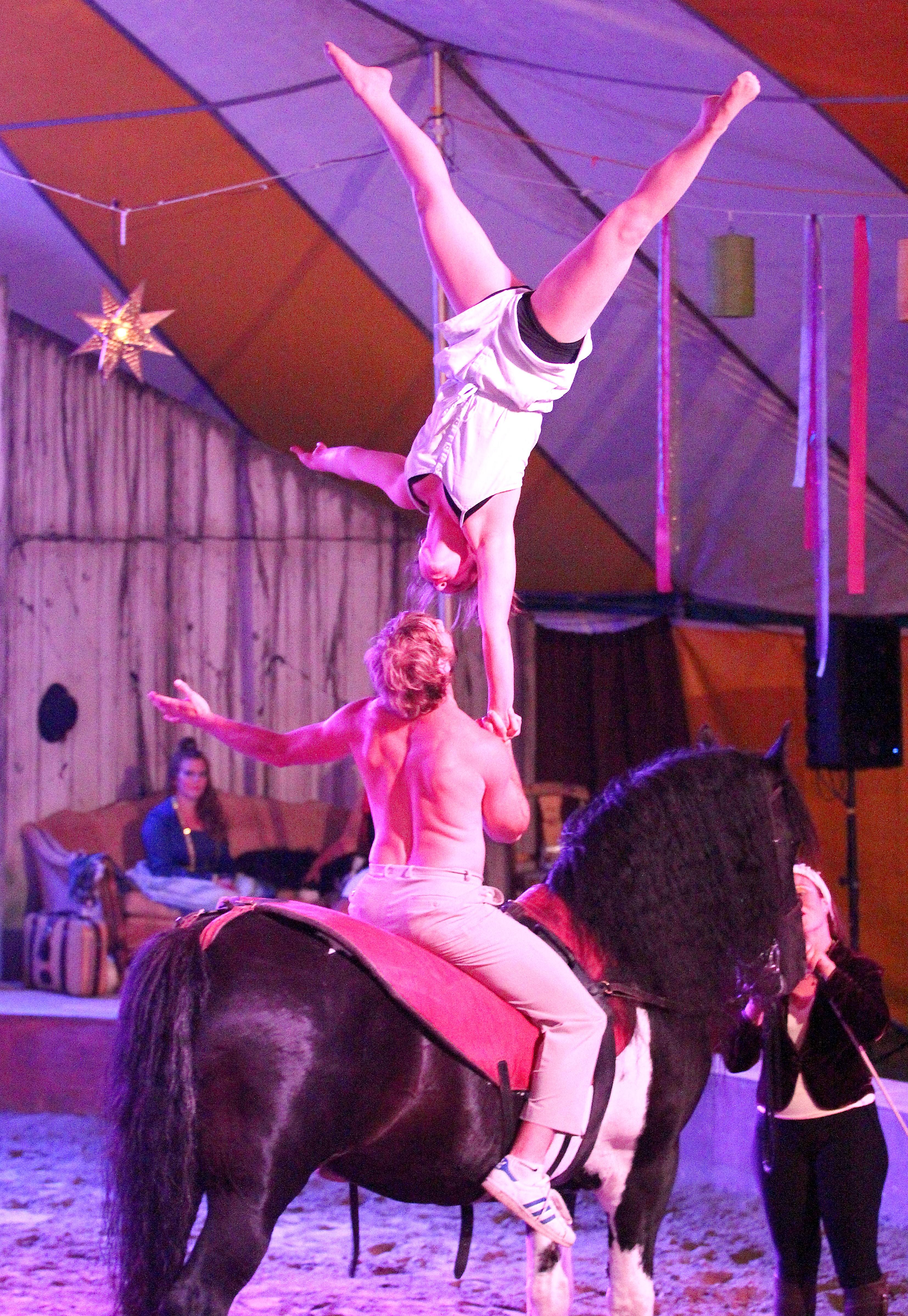 Vie de Cirque 2