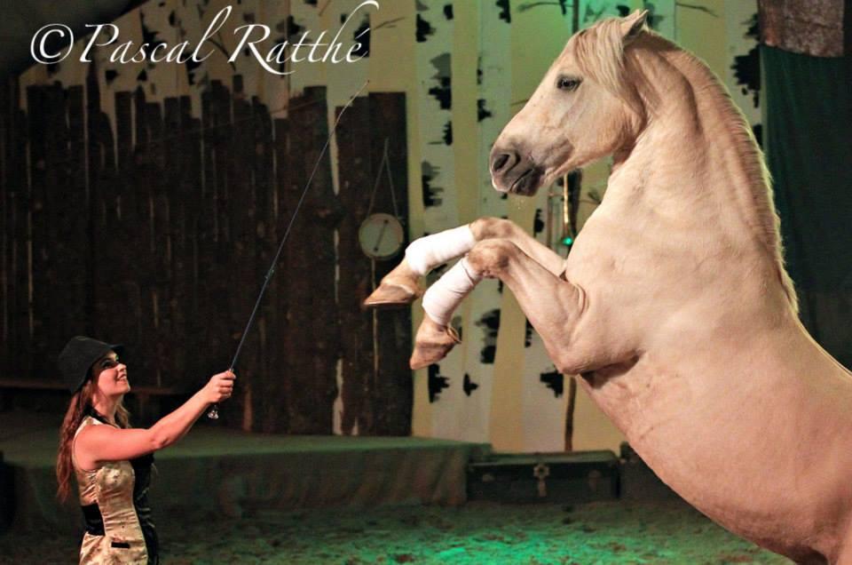 Vie de Cirque 1
