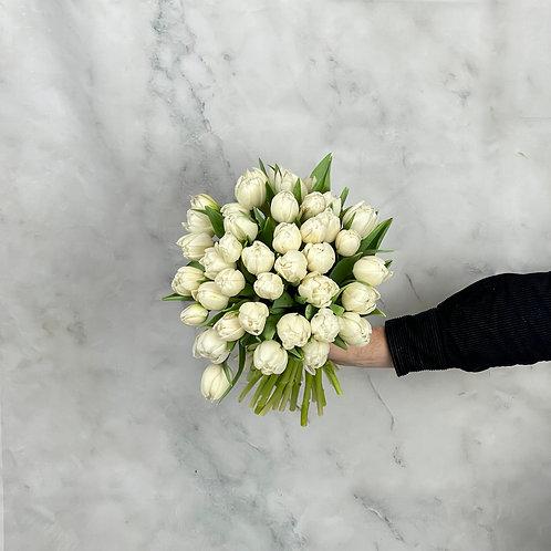 White Double Tulips