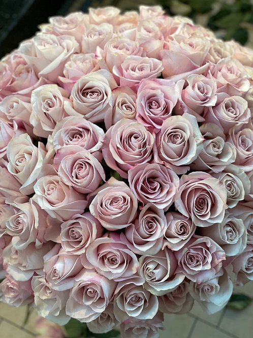 Secret Garden Roses