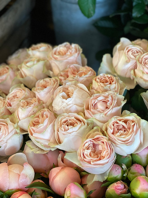 Unforgettable Roses