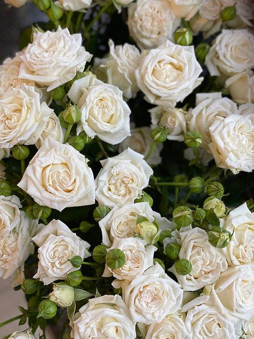 Bridal Flow